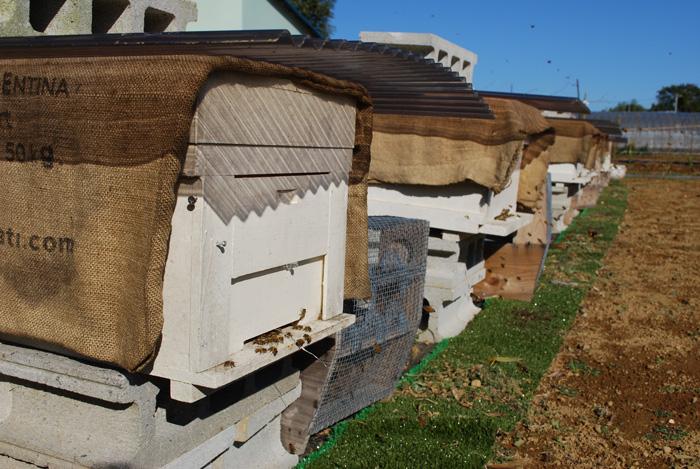 browncrwの天然ハチミツのはち場